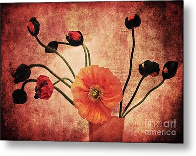 Wild Poppies Metal Print by Angela Doelling AD DESIGN Photo and PhotoArt