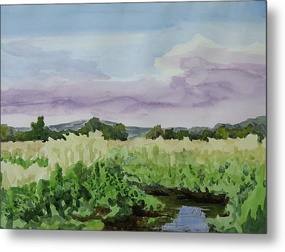 Wild Rice Field Metal Print by Bethany Lee