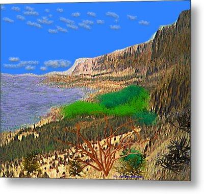 Wild Seashore Metal Print by Dr Loifer Vladimir