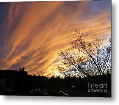 Wild Sky Of Autumn Metal Print by Barbara Griffin