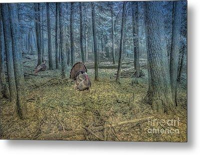 Wild Turkeys In Forest Version Two Metal Print