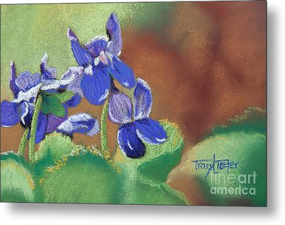 Wild Violets Metal Print by Tracy L Teeter