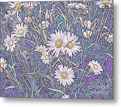 Wildflower Daisies In Field Of Purple And Teal Metal Print