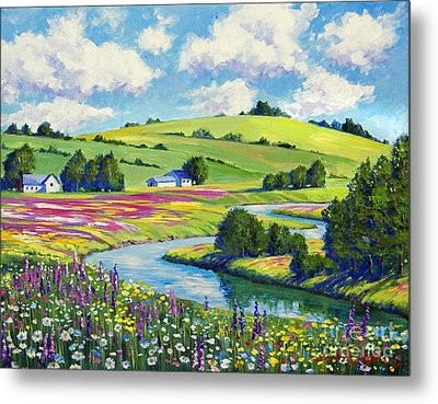 Wildflower Fields Metal Print by David Lloyd Glover