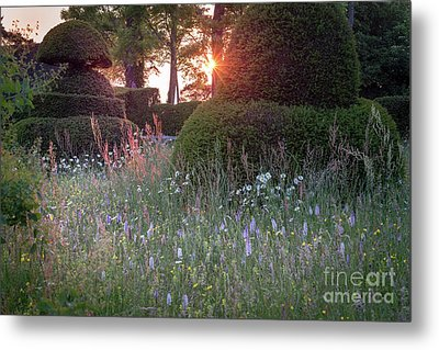 Wildflower Meadow At Sunset, Great Dixter Metal Print