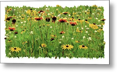 Wildflower Meadow Metal Print by JQ Licensing