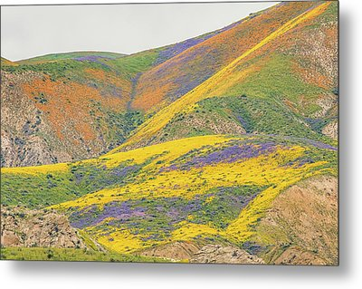 Metal Print featuring the photograph Wildflowers At The Summit by Marc Crumpler