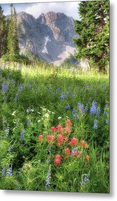 Wildflowers In Albion Basin Utah Metal Print