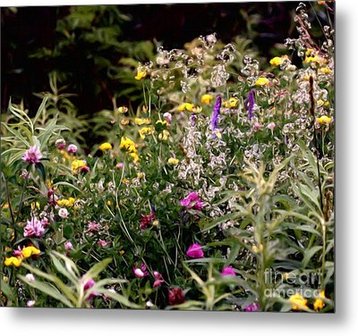Metal Print featuring the painting Wildflowers by Smilin Eyes  Treasures