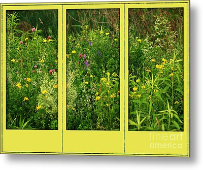 Metal Print featuring the photograph Wildflowers Through A Window by Smilin Eyes  Treasures