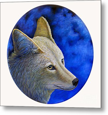 Wiley Coyote Metal Print by Brian  Commerford