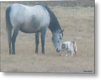 Will You Play With Me Metal Print