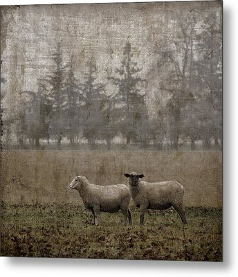 Willamette Valley Oregon Metal Print by Carol Leigh