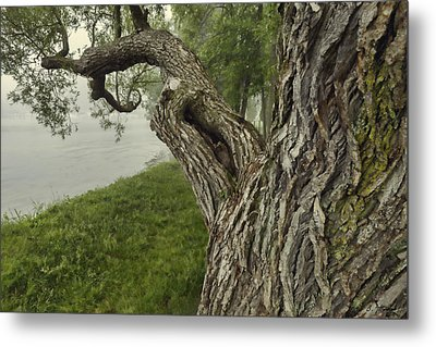 Willow Bay - Lake Geneva Wisconsin Metal Print by Ben Thompson