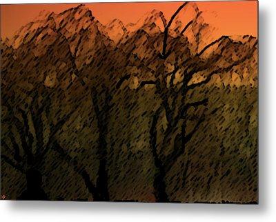 Willows Of Sunrise Metal Print by Debra     Vatalaro