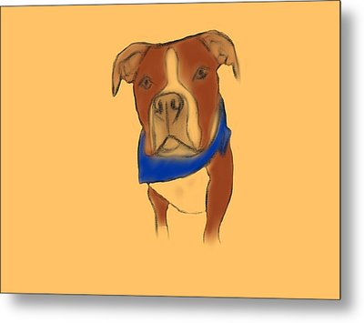 Willy The Pittie Metal Print
