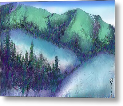 Wilmore Wilderness Area Metal Print by Shirley Heyn
