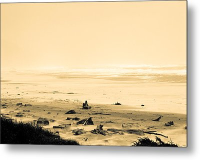 Metal Print featuring the photograph Wind Storm On The Beach by Craig Perry-Ollila