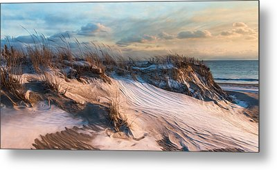Metal Print featuring the photograph Wind Swept by Robin-lee Vieira