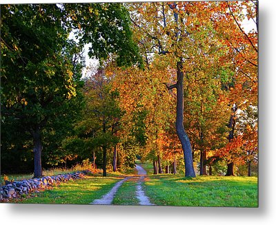 Winding Road In Autumn Metal Print
