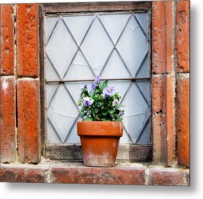 Window And Pots I Metal Print by Carl Jackson