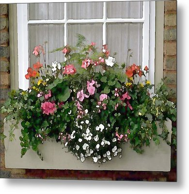 Window Box Of Mixed Flowers Metal Print by Elaine Plesser