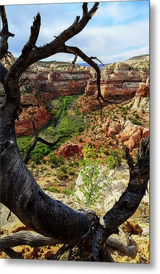 Metal Print featuring the photograph Window by Chad Dutson