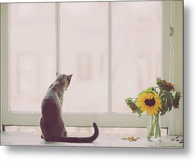 Window In Summer Metal Print by Cindy Loughridge