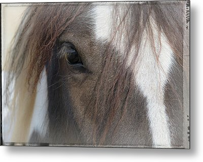 Window To A Horse's Soul Metal Print by Mick Anderson