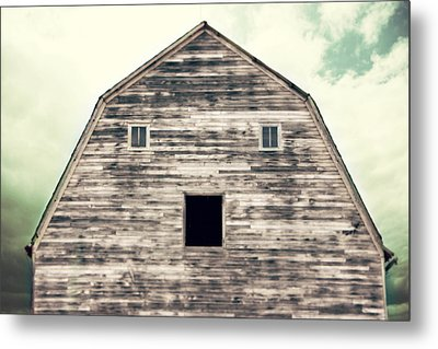 Window To The Soul Metal Print by Julie Hamilton