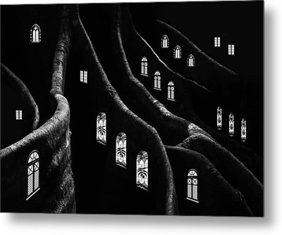 Windows Of The Forest Metal Print by Jacqueline Hammer