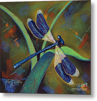 Winds Of Change Metal Print by Tracy L Teeter