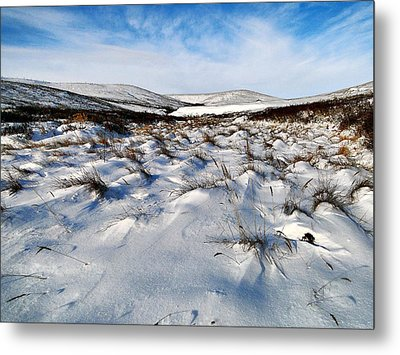 Metal Print featuring the photograph Windswept by Blair Wainman