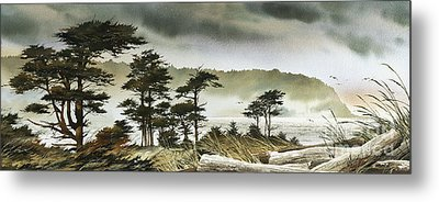 Windswept Shore Metal Print by James Williamson
