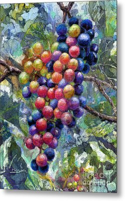 Wine Grapes Metal Print by Hailey E Herrera