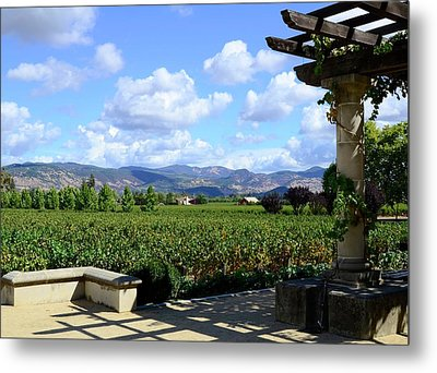 Metal Print featuring the photograph Wine Please by Corinne Rhode