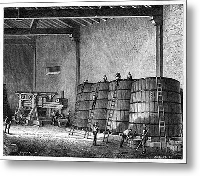 Wine Production, 19th Century Metal Print