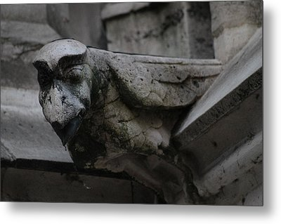 Metal Print featuring the photograph Winged Gargoyle by Christopher Kirby