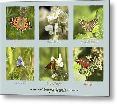 Winged Jewels Metal Print