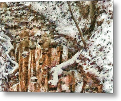 Winter - Natures Harmony Painted Metal Print by Mike Savad
