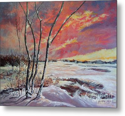 Winter Across The Lake  Metal Print