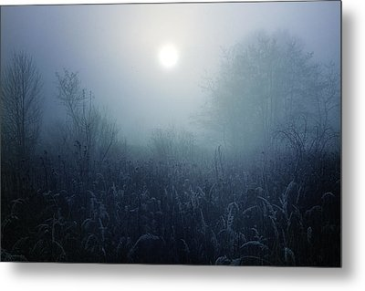 Winter Afternoon - Poland Metal Print