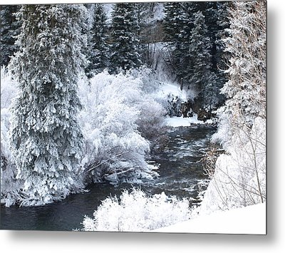 Winter Along The Creek Metal Print by DeeLon Merritt