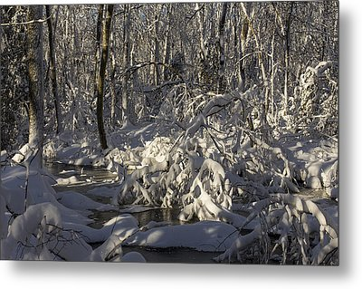 Winter At Borden Brook Metal Print by Andrew Pacheco