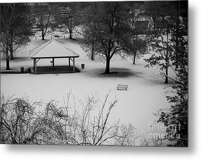 Winter At The Park Metal Print by Idaho Scenic Images Linda Lantzy