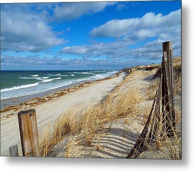 Winter Beach View Metal Print by Dianne Cowen