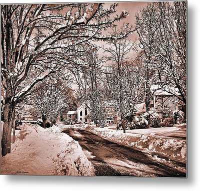 Winter Beauty Metal Print by Mikki Cucuzzo