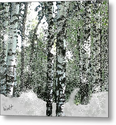 Winter Birches Metal Print