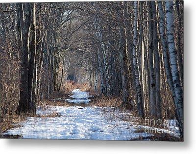 Winter Bliss Metal Print