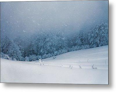 Winter Blizzard Metal Print by Evgeni Dinev